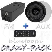 Комплект радио Artsound CRAZY-PACK Hyde и динамики FL501
