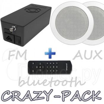Комплект радио Artsound CRAZY-PACK Hyde и динамики MD50 W